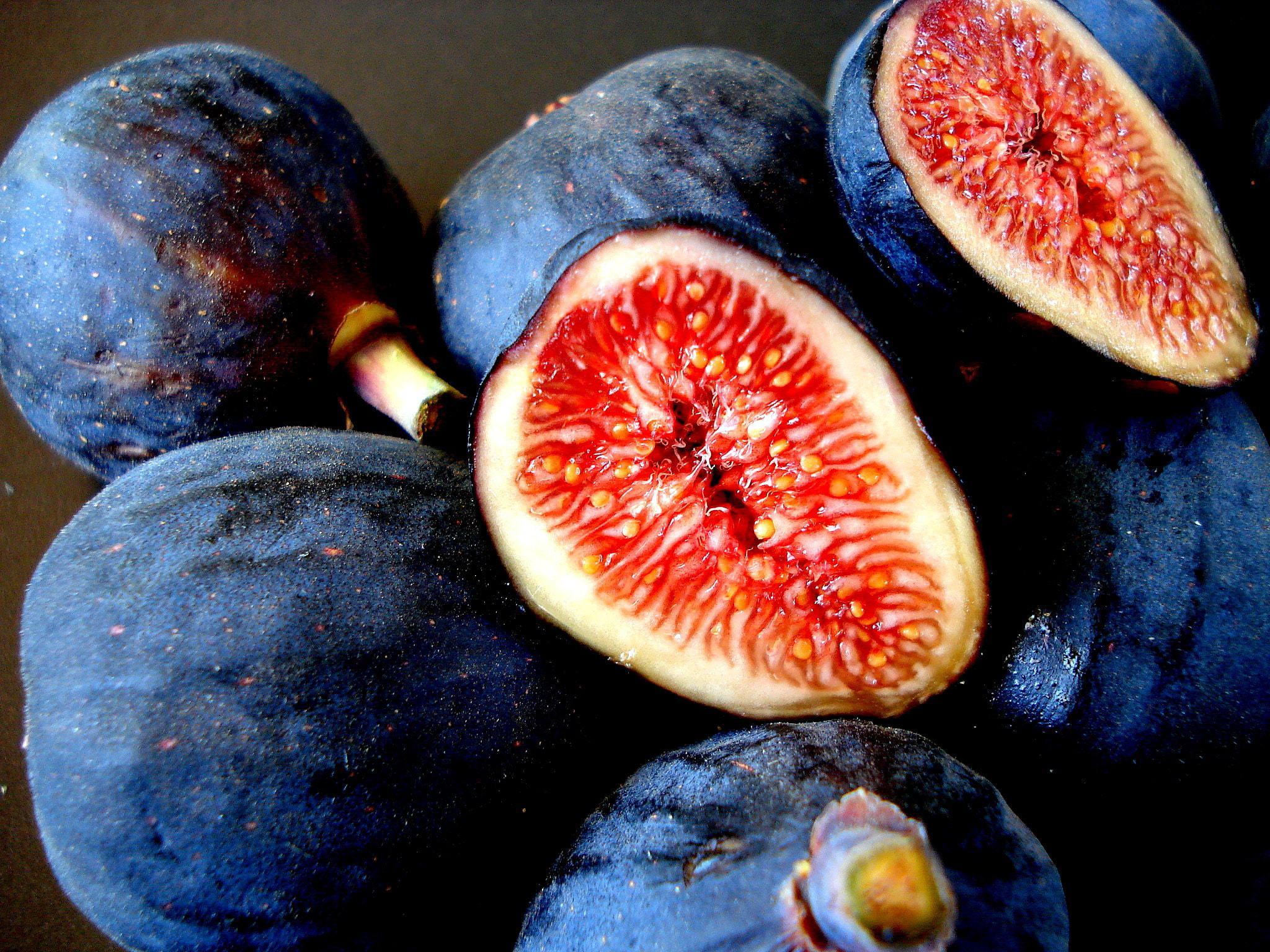 Fig Wallpaper