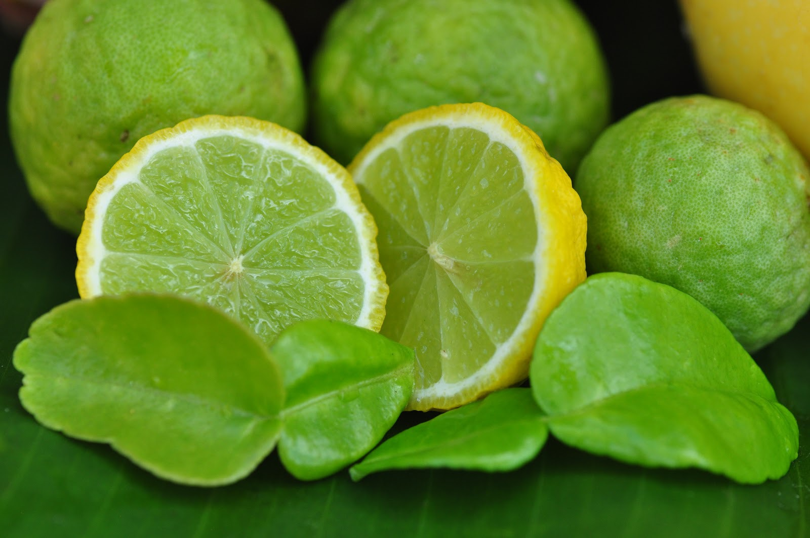 Lime Images