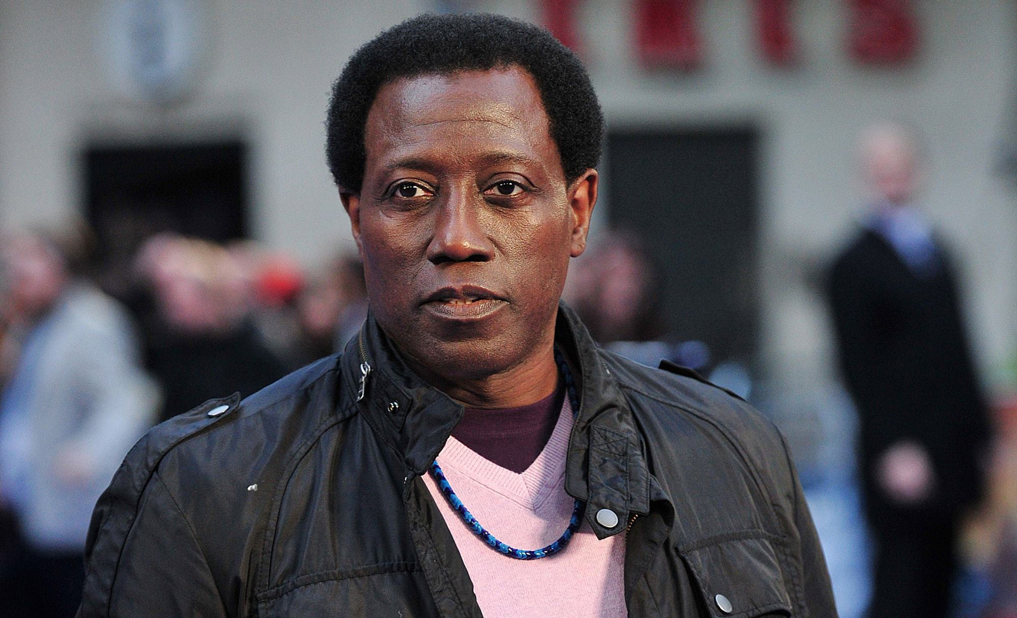 Wesley Snipes Wallpapers HD