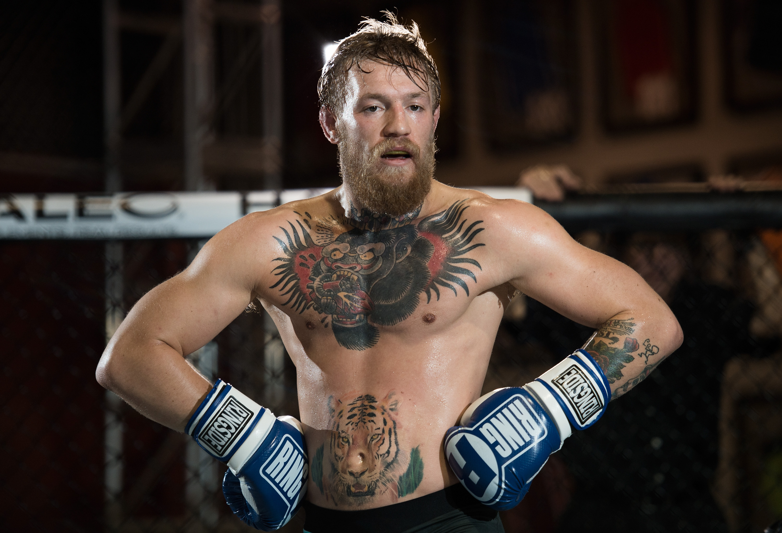 Conor Mcgregor Boxing