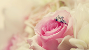 Flower And Ring For Wedding Wallpaper