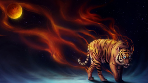 Tiger High Definition Wallpapers
