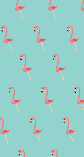 Flamingo Iphone Background
