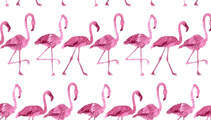 Flamingo Iphone HD Wallpaper