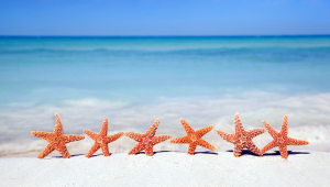 Starfish HD Desktop