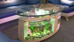 Charming Coffee Table Fish Tank