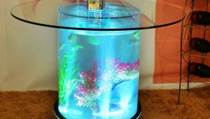 Mini Aquarium Coffee Table