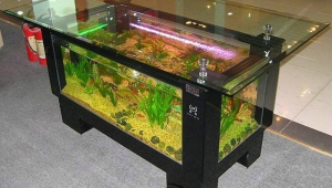 Outstanding Aquarium Coffee Table
