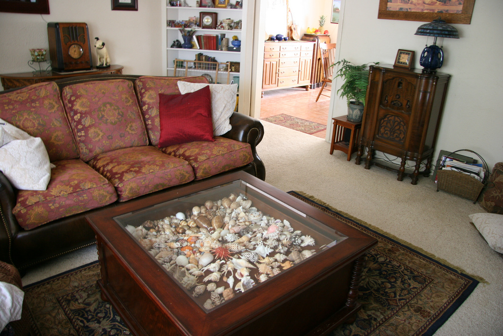 Shell Glass Display Coffee Table - Glass Display Coffee Table Design Images Photos Pictures