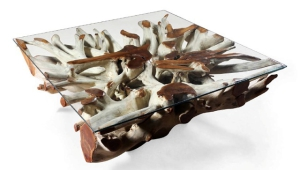 Teak Root Coffee Table