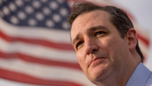 Ted Cruz HD Wallpaper