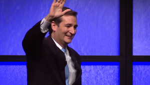 Ted Cruz For Desktop