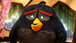 The Angry Birds Movie Walpapers