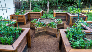 Make Raised Garden Beds