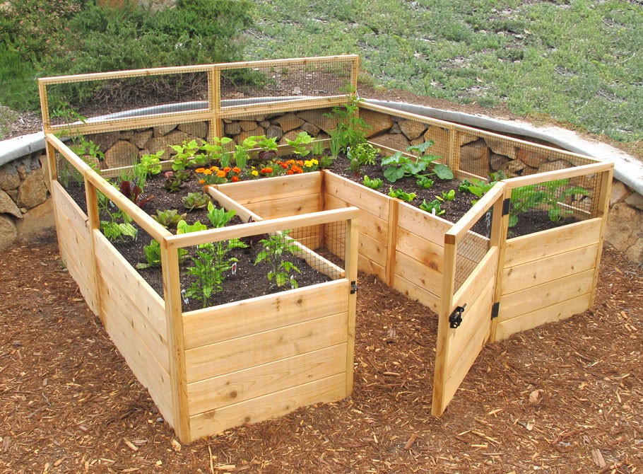 Raised garden beds ideas for growing images for Best wood for raised garden beds