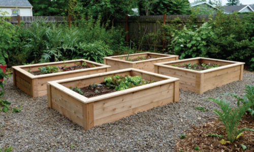 Raised Garden Beds Ideas for Growing