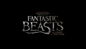 Fantastic Beasts And Where To Find Them Photos