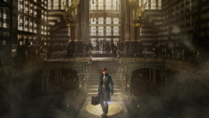 Fantastic Beasts And Where To Find Them Wallpapers