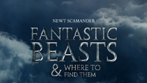 Fantastic Beasts And Where To Find Them Wallpapers HD