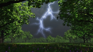 Lightning Widescreen