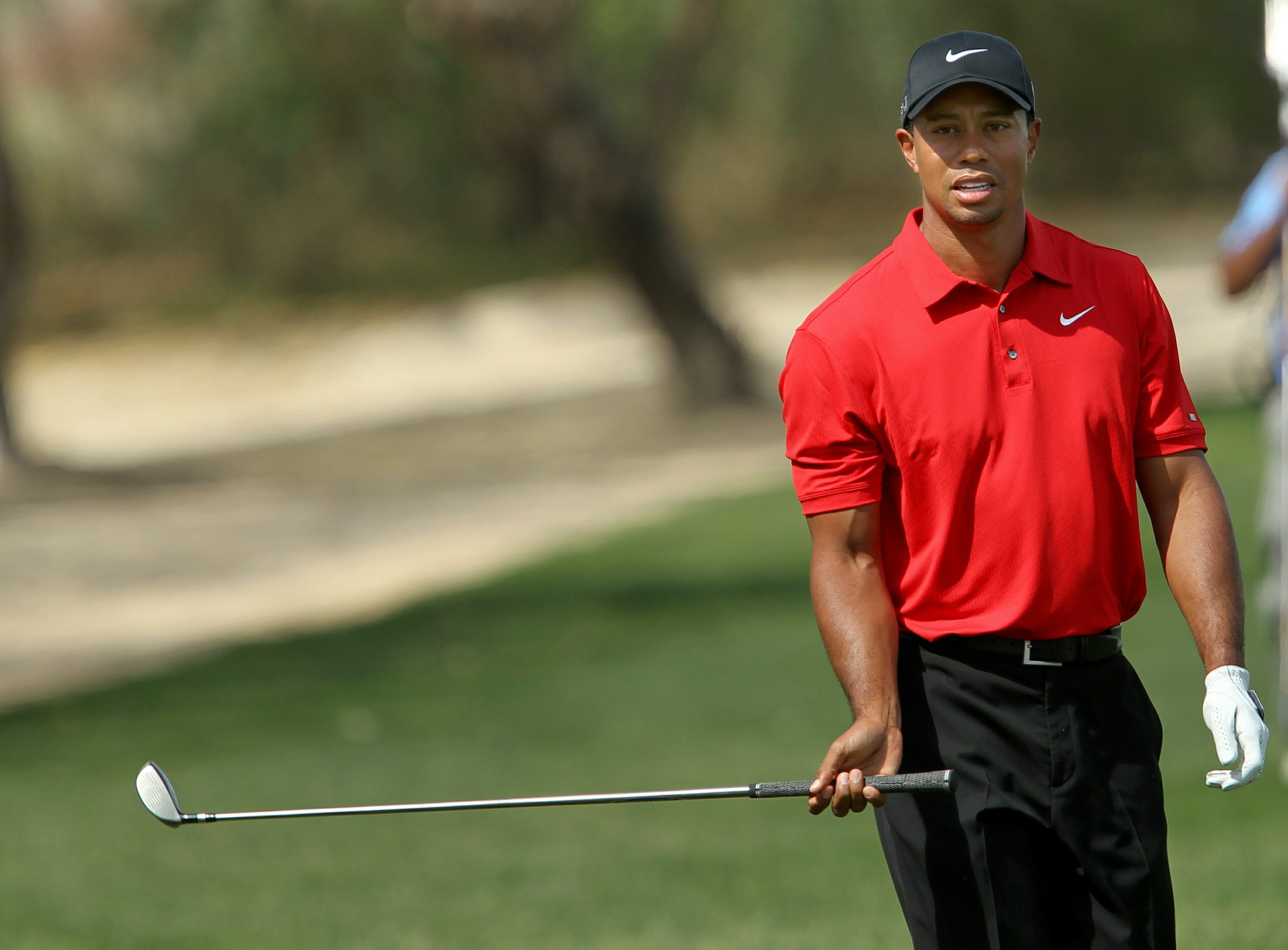 Photographs of tiger woods