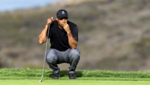Tiger Woods Photos