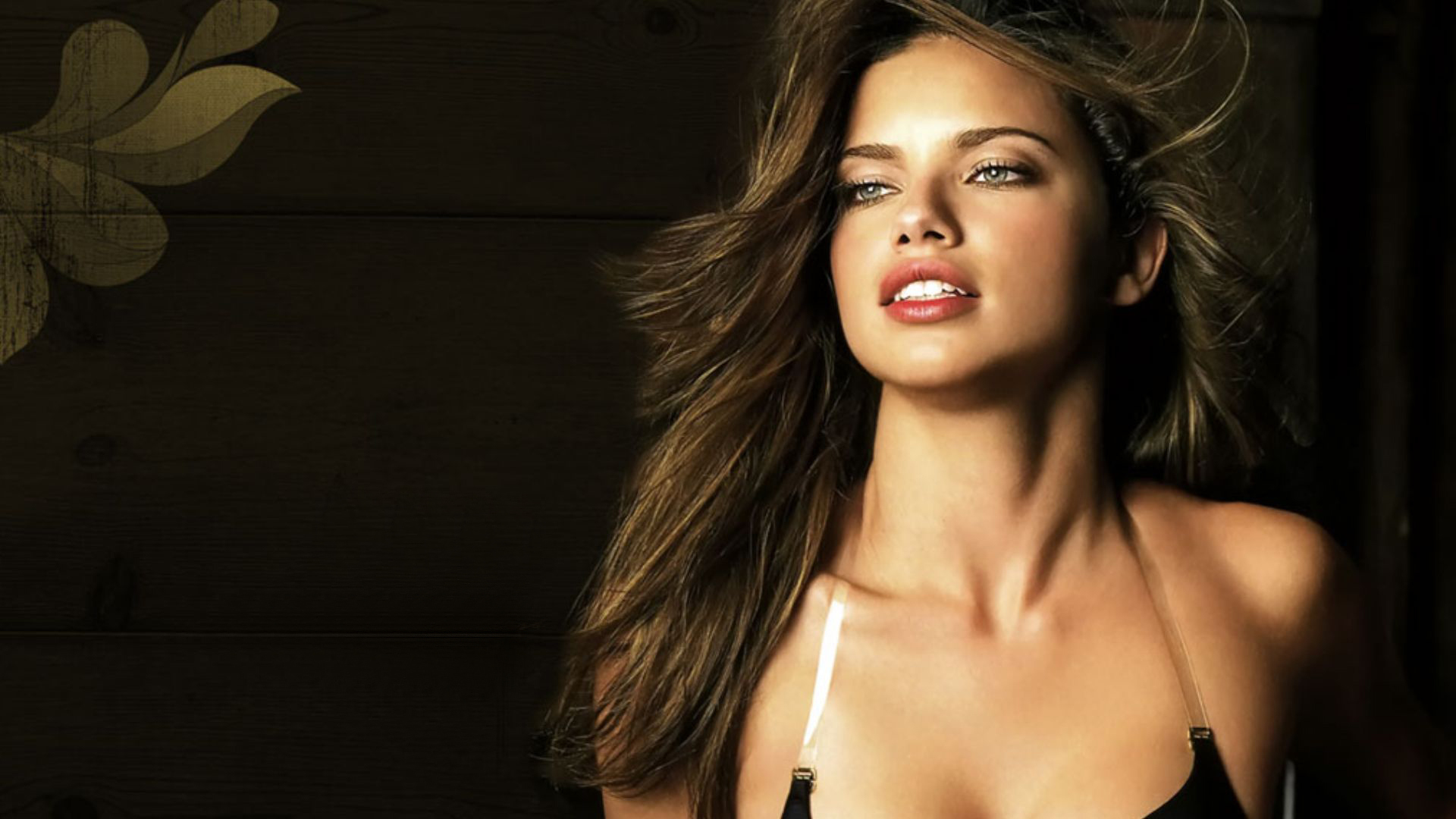 Adriana lima wallpapers hd voltagebd Images