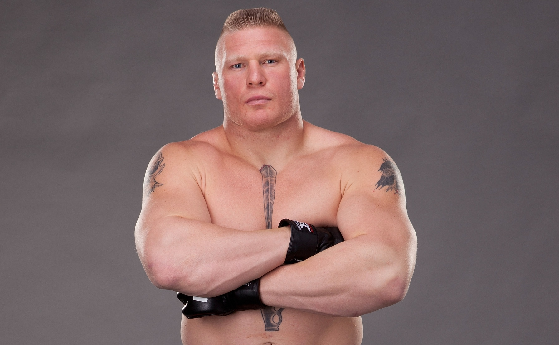 brock lesnar wallpapers images photos pictures backgrounds