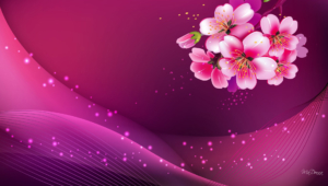Pink Abstract HD
