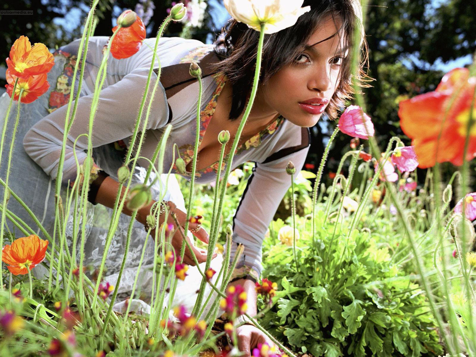 Rosario Dawson Images