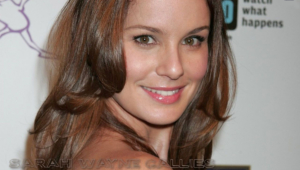 Sarah Wayne Callies Background