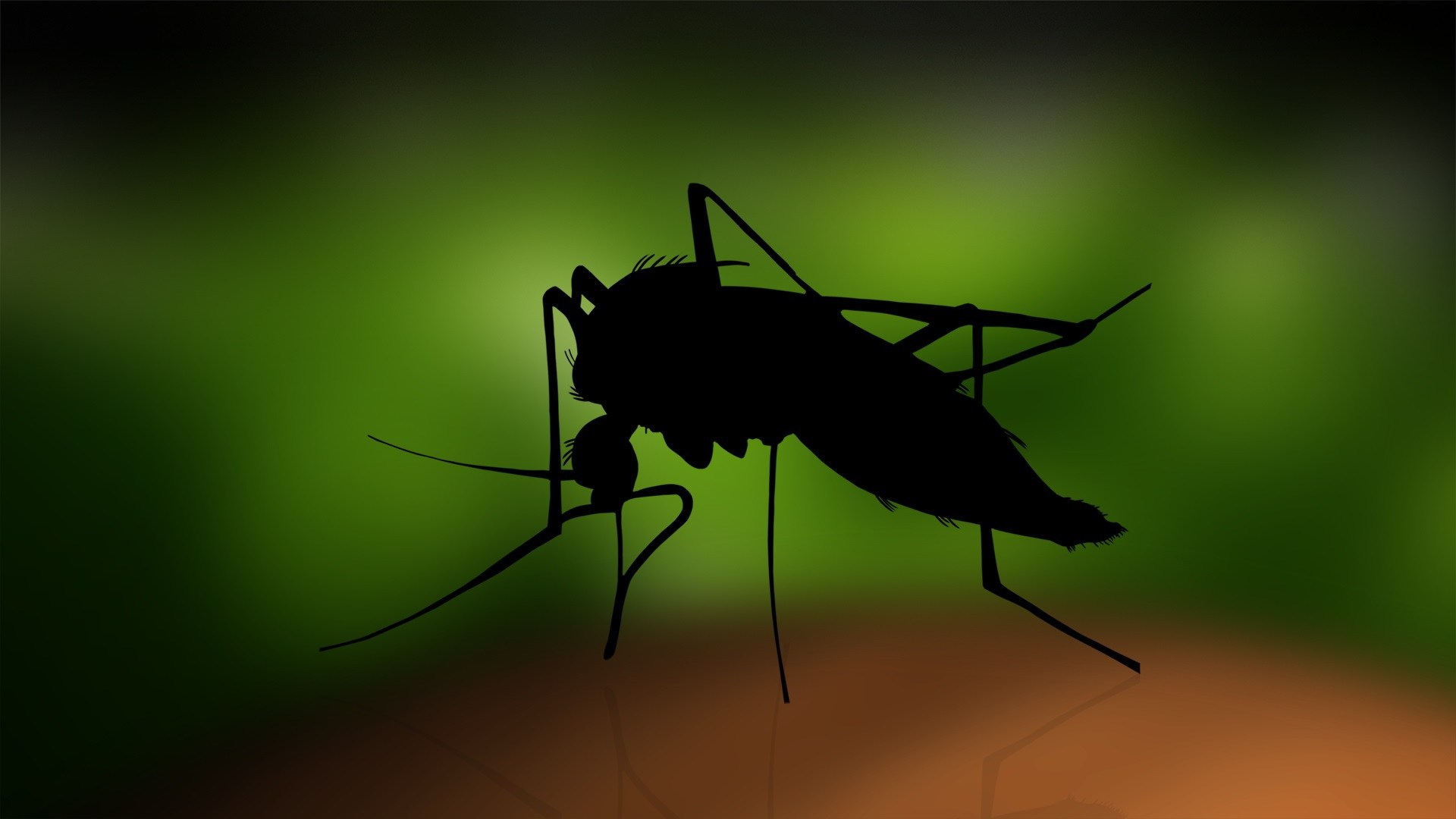Hd wallpaper virus - Zika Virus Wallpapers Hd