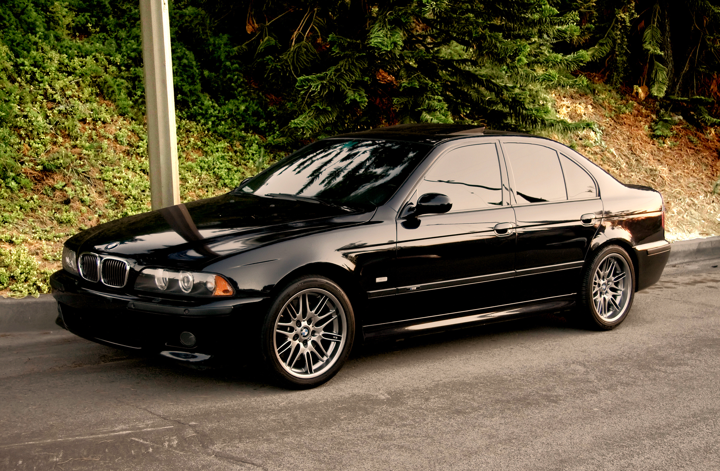 Bmw e39 wallpapers images photos pictures backgrounds - Bmw e39 wallpaper ...