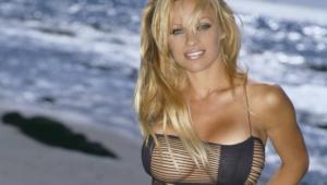 Pamela Anderson Desktop