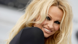 Pamela Anderson Hd Desktop