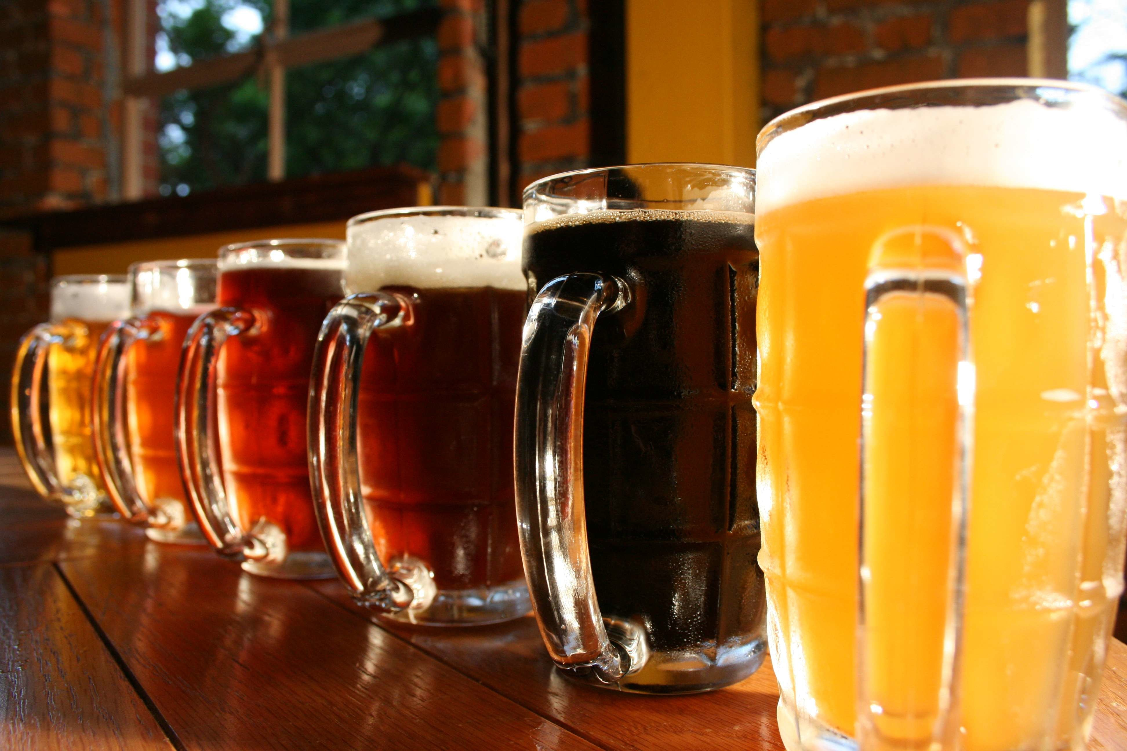 list of synonyms and antonyms of the word hd beer