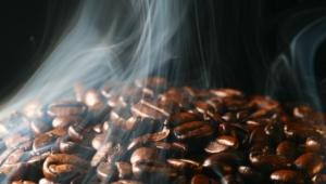 Coffee Beans 3624