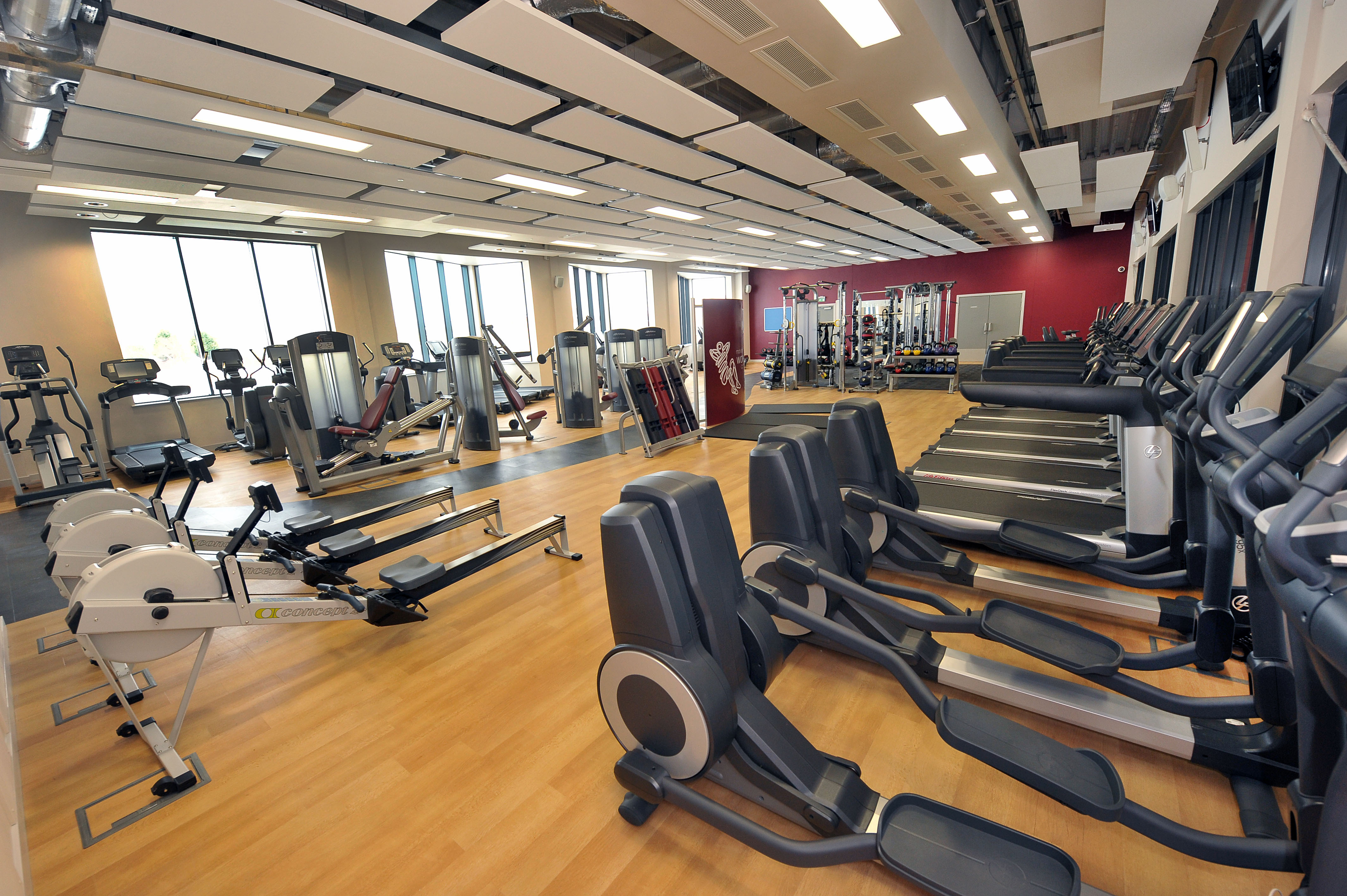 Gyms and Fitness Centers for Sale