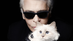 Karl Lagerfeld Photos 1