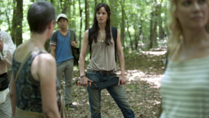 Lori Grimes For Deskto
