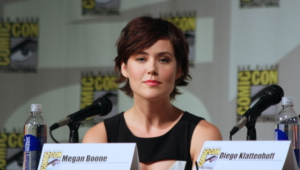 Megan Boone Deskto
