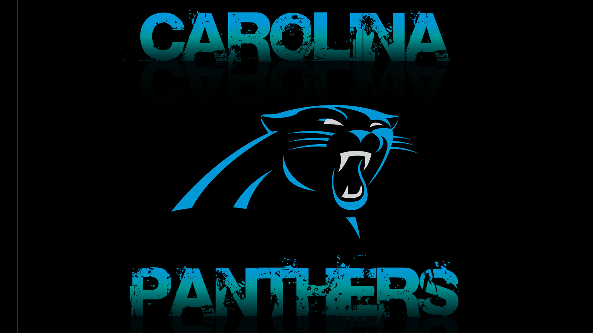 carolina panthers wallpapers images photos pictures