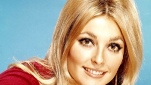 Sharon Tate Wallpapers Hd