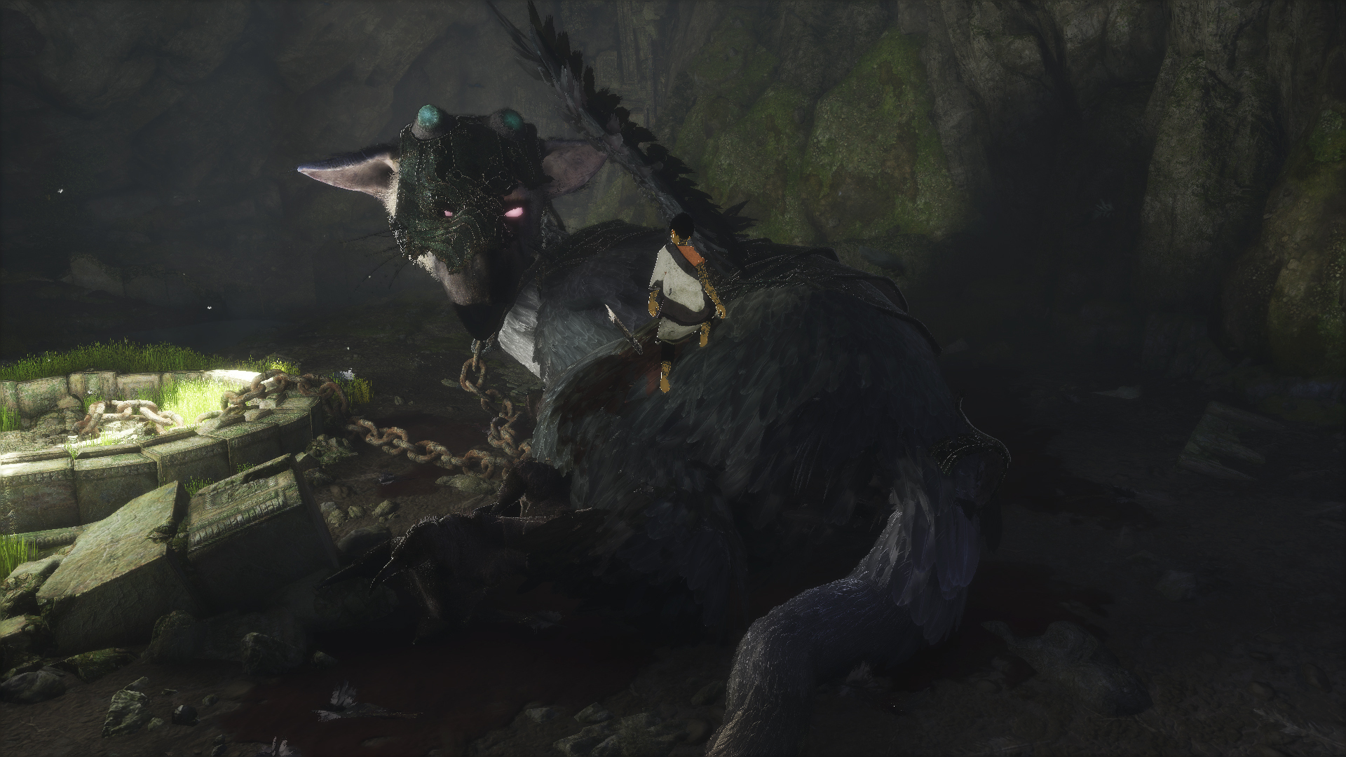 the last guardian hd - photo #1