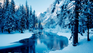 Winter Full HD