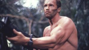 Arnold Schwarzenegger Images