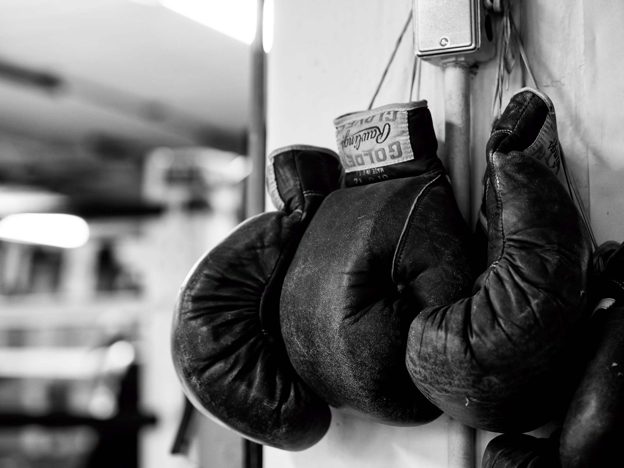 Boxing Gloves Wallpapers Images Photos Pictures Backgrounds