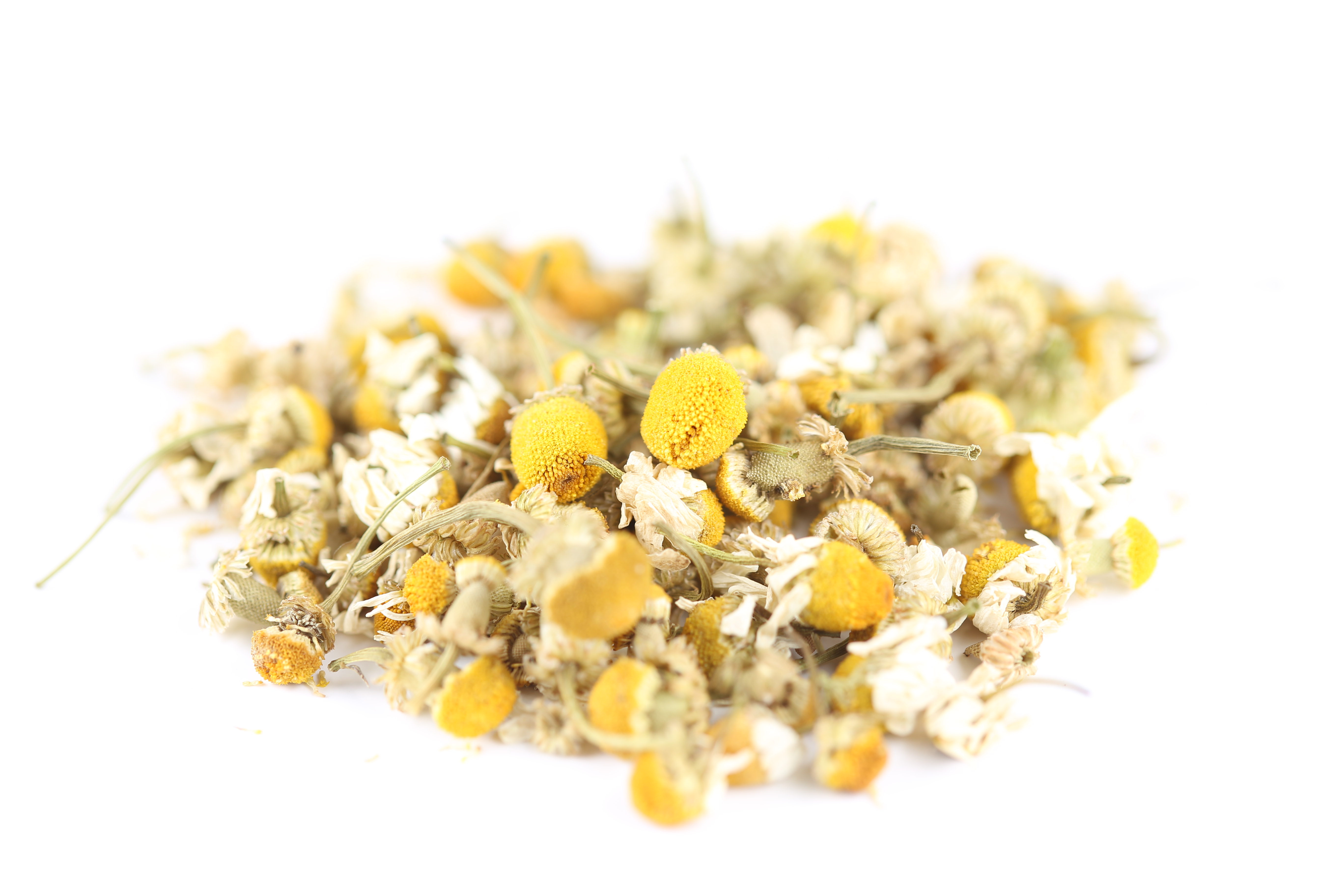 Chamomile High Quality Wallpapers