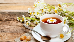 Chamomile Pictures