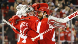 Detroit Red Wings Free Download